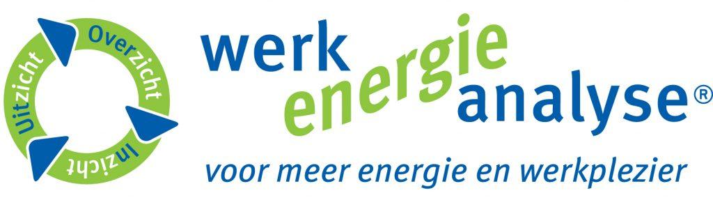logo WerkEnergieAnalyse totaal 1